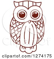 Clipart Of A Brown Sketched Owl 5 Royalty Free Vector Illustration