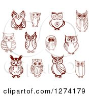 Clipart Of Brown Sketched Owls Facing Front Royalty Free Vector Illustration