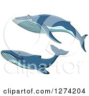 Clipart Of Swimming Whales Royalty Free Vector Illustration