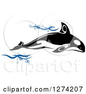 Clipart Of A Black And White Killer Whale Orca With Blue Waves Royalty Free Vector Illustration