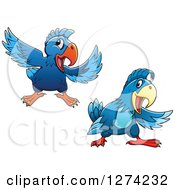 Clipart Of Happy Blue Parrots Royalty Free Vector Illustration