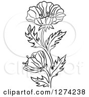 Clipart Of A Black And White Poppy Flower Royalty Free Vector Illustration by Vector Tradition SM