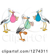 Clipart Of Baby Delivery Storks Royalty Free Vector Illustration
