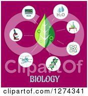Clipart Of A Leaf And Science Icons On Pink Over Biology Text Royalty Free Vector Illustration