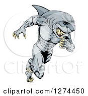 Clipart Of A Muscular Shark Man Mascot Running Royalty Free Vector Illustration