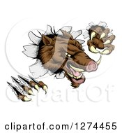 Clipart Of A Fierce Brown Boar Monster Clawing Through A Wall Royalty Free Vector Illustration by AtStockIllustration