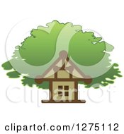 House And Tree Canopy