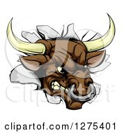 Clipart Of A Mad Aggressive Bull Breaking Through A Wall Royalty Free Vector Illustration