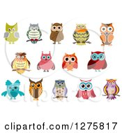Clipart Of Colorful Owl Designs Royalty Free Vector Illustration