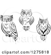 Clipart Of Black And White Resting Owls Royalty Free Vector Illustration