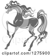 Clipart Of A Gray Prancing Horse Royalty Free Vector Illustration