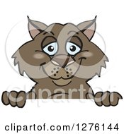 Clipart Of A Happy Wombat Peeking Over A Sign Royalty Free Vector Illustration by Dennis Holmes Designs