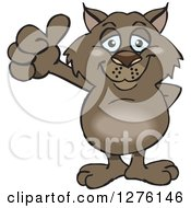 Clipart Of A Happy Wombat Holding A Thumb Up Royalty Free Vector Illustration by Dennis Holmes Designs