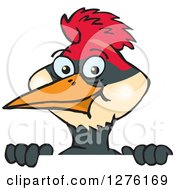 Clipart Of A Happy Woodpecker Peeking Over A Sign Royalty Free Vector Illustration by Dennis Holmes Designs