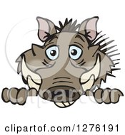 Clipart Of A Happy Warthog Peeking Over A Sign Royalty Free Vector Illustration