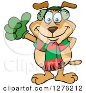 Sparkey Dog Wearing A Winter Scarf And Ear Muffs And Giving A Thumb Up