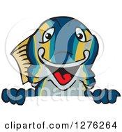 Happy Tuna Fish Peeking Over A Sign