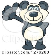 Happy Blue Eyed Panda Holding A Thumb Up