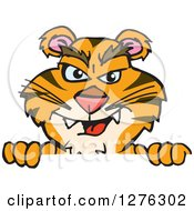 Clipart Of A Tiger Peeking Over A Sign Royalty Free Vector Illustration