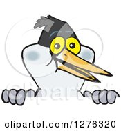 Clipart Of A Tern Bird Peeking Over A Sign Royalty Free Vector Illustration