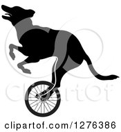 Clipart Of A Black Silhouetted Dog Riding A Wheel Royalty Free Vector Illustration