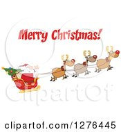 Clipart Of A Merry Christmas Greeting Over Santa And His Flying Reindeer Royalty Free Vector Illustration