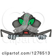 Clipart Of A Black Widow Spider Grinning And Peeking Over A Sign Royalty Free Vector Illustration