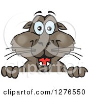 Clipart Of A Happy Sea Lion Peeking Over A Sign Royalty Free Vector Illustration