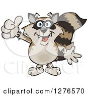 Happy Raccoon Holding A Thumb Up
