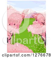 Clipart Of A Background Of Pink Cherry Blossom Trees And Snow Capped Mountains Royalty Free Vector Illustration