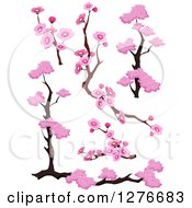 Clipart Of Branches And Pink Cherry Blossom Designs Royalty Free Vector Illustration by BNP Design Studio