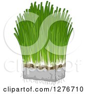 Clipart Of A Bunch Of Wheat Grass Royalty Free Vector Illustration