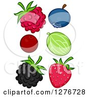 Clipart Of A Raspberry Blueberry Cranberry Gooseberry Blackberry And Strawberry Royalty Free Vector Illustration