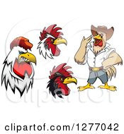 Clipart Of Tough Roosters Royalty Free Vector Illustration