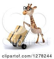 Clipart Of A 3d Bespectacled Giraffe Facing Left And Moving Boxes On A Dolly Royalty Free Illustration
