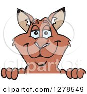 Clipart Of A Happy Red Kangaroo Peeking Over A Sign Royalty Free Vector Illustration