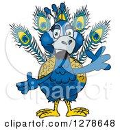 Waving Peacock