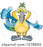 Clipart Of A Blue And Yellow Macaw Parrot Holding A Thumb Up Royalty Free Vector Illustration