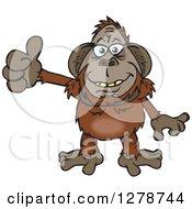 Happy Orangutan Holding A Thumb Up