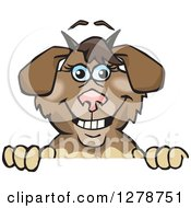 Clipart Of A Happy Nanny Goat Peeking Over A Sign Royalty Free Vector Illustration by Dennis Holmes Designs