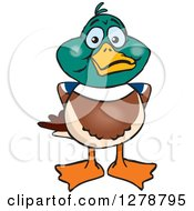 Clipart Of A Happy Mallard Drake Duck Royalty Free Vector Illustration