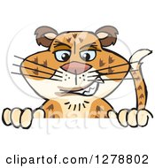 Clipart Of A Leopard Big Cat Peeking Over A Sign Royalty Free Vector Illustration