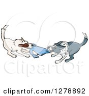 Clipart Of Border Collie Dog Fighting Over A Shirt Royalty Free Vector Illustration by Dennis Holmes Designs