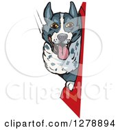Clipart Of A Border Collie Dog In A Car Window Royalty Free Vector Illustration by Dennis Holmes Designs