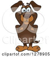 Clipart Of A Happy Dachshund Dog Standing Royalty Free Vector Illustration