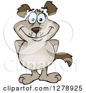 Clipart Of A Happy Brown Dog Standing Royalty Free Vector Illustration by Dennis Holmes Designs