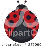 Clipart Of An Aerial View Of A Ladybug Royalty Free Vector Illustration