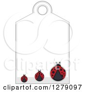 Clipart Of A Sales Tag With Three Ladybugs And Text Space Royalty Free Vector Illustration