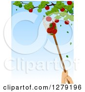 Clipart Of A Worker Using A Fruit Picker To Grab Apples From A Tree With Blue Sky Text Space Royalty Free Vector Illustration by BNP Design Studio