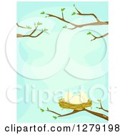 Clipart Of A Bird Nest With Eggs On Nearly Bare Spring Branches Over Blue Royalty Free Vector Illustration